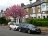 wimbledon-streetscape